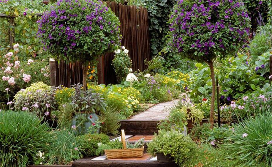 jardins a fleur de peau